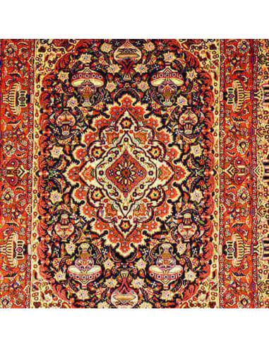 Kashmer sherkat extra Persia