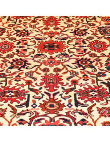 Anjelas Extra Persia misura 215 x 149